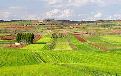 Convocadas Ayudas Creación Empresas Agrarias y a la Inversión de la JCCM 2018
