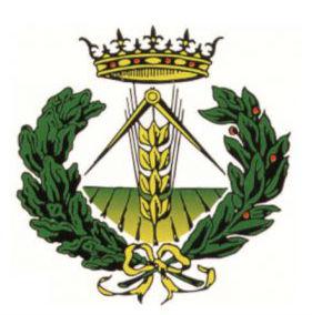 I.T.A. Jaén